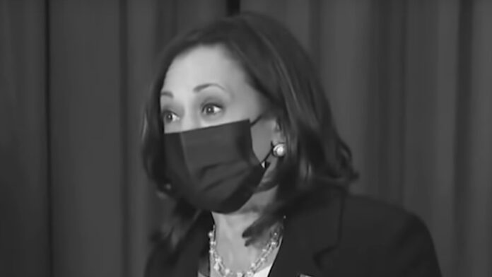 The Dems Very Serious Kamala Problem Exposed...