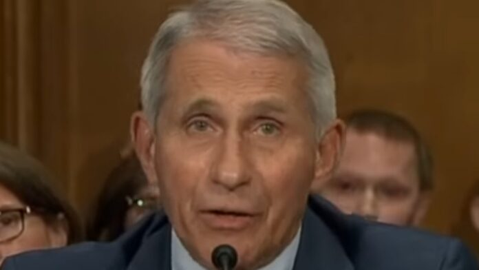 Dr. Fauci Panics and Freaks Out Over Rand Paul...
